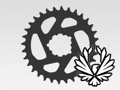 Chainrings - Eagle ready - 12-speed
