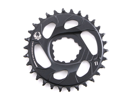 SRAM X-SYNC 2 XX1 Eagle Direct Mount Kettenblatt 12-fach...