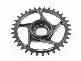 E*THIRTEEN Chainring e*spec Direct Mount Bosch CX Gen4