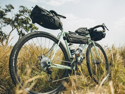 TOPEAK Saddle bag BackLoader 6 liter | green