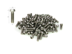 Titanium Screw M6x20 with Chamfer
